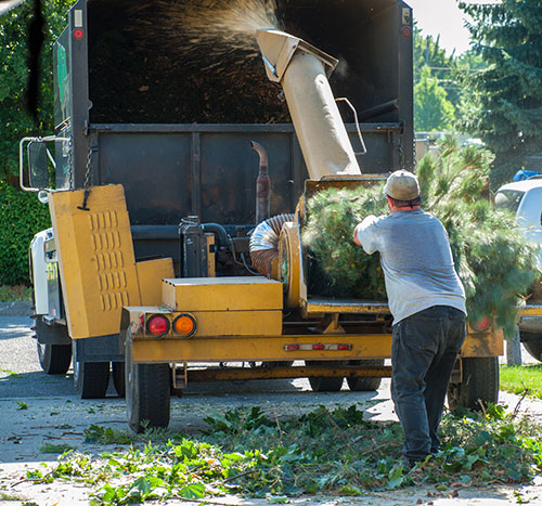 Best companies for tree service equipment